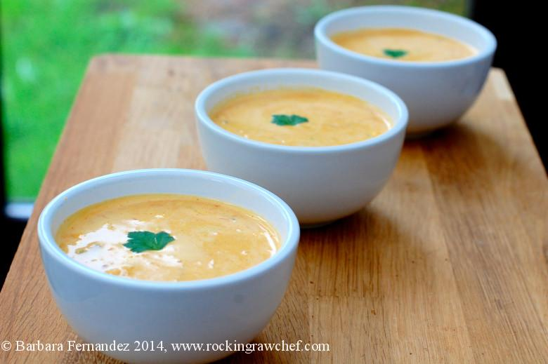 Creamy veg soup for yoga and raw food retreat