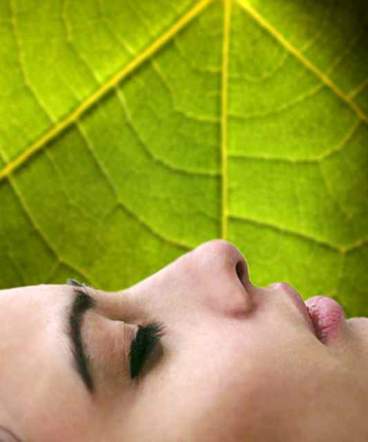 Woman_Resting_Green_Leaf.jpg